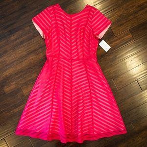 NWT Shabby Apple Nolita Fit & Flare Dress